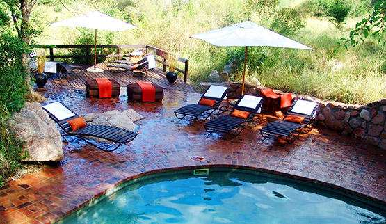 Sabi Sabi Little Bush Camp swimming pool.